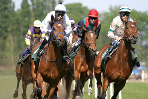 Proposed race horse bill draws criticism, debate