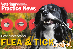 Flea and tick control explored in free e-book