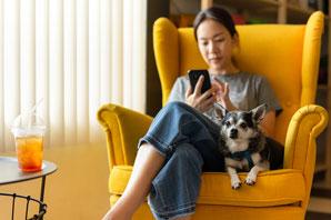 VitusVet, Nationwide surpass one million mobile insurance claims
