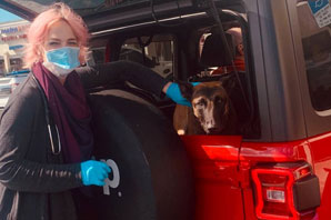 From the trenches: Veterinary musings from a pandemic-rattled brain