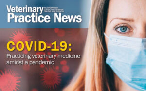 Free COVID-19 e-book now available