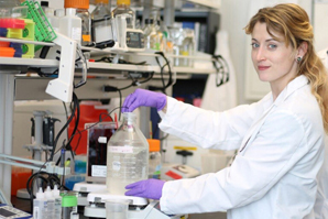 DVMs essential to future of biomedical research