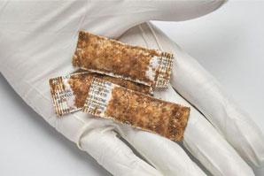 Vaccine bait aims to control rabies in U.S. wildlife