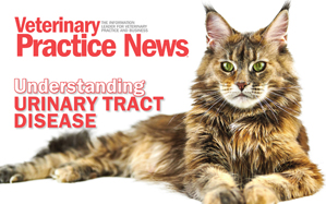 Free urinary tract disease e-book now available