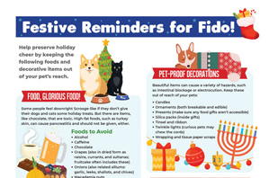 Download our holiday hazards infographic