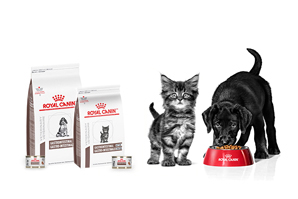 Did you know we have GI diets for puppies and kittens?