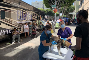 Free veterinary care program goes national