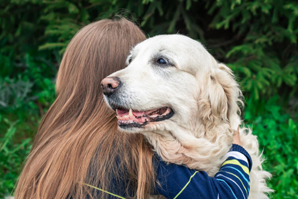 National dog study to explore CDS
