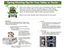 Infographic: Spring cleaning tips for clients