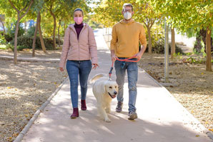 Shelter pet spays/neuters, microchipping supported via walkathon