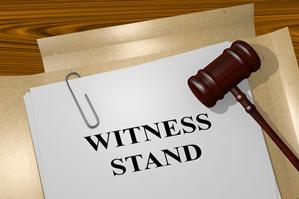 Law & order: Veterinarians in court