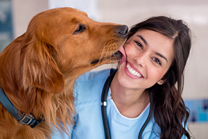 Don't miss out on exclusive content from the veterinary experts – available only with VPN Plus+