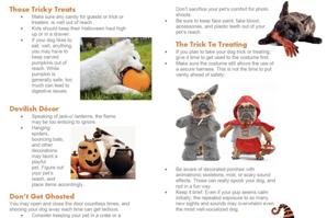Infographic helps ID and prevent Halloween hazards