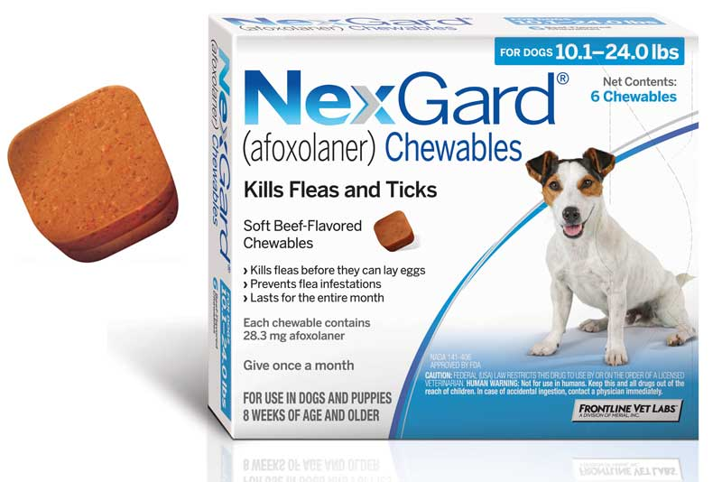 Nexgard Approved To Fight Brown Dog Ticks Veterinary Practice News