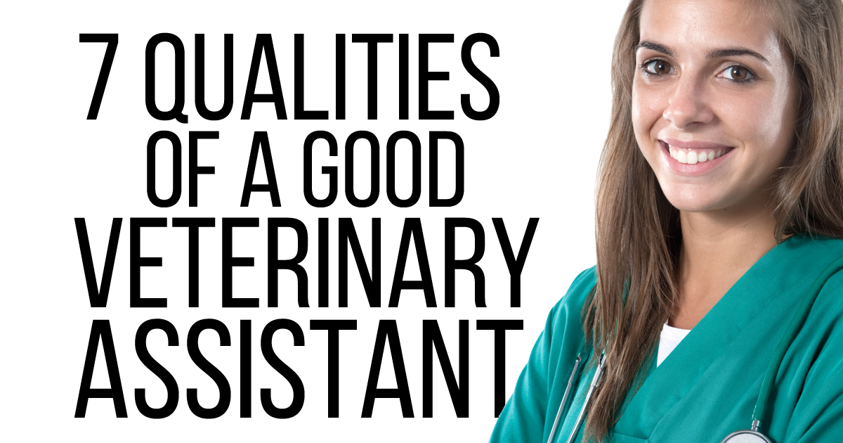 7 Qualities Of A Good Veterinary Assistant Veterinary Practice News