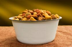 Bowl of pet food