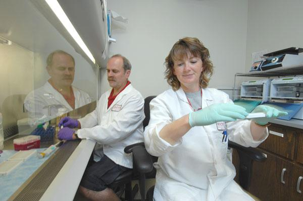 One of the busiest parts of WSU's veterinary college is the Washington Animal Disease Biotechnology Laboratory. WADDL processes 500,000 samples annually and is a key resource for WSU's outstanding veterinary microbiology and pathology training programs.