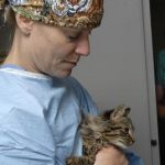 A senior veterinary student comforts an anxious kitten prior to surgery.
