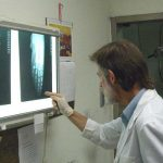 Dr. Alastair Watson examines a radiograph of a rare polydactyly specimen of bottlenose whales' flipper.