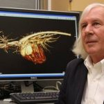 Professor David Sisson, DVM, Dipl. ACVIM, runs Oregon State's veterinary cardiology program.