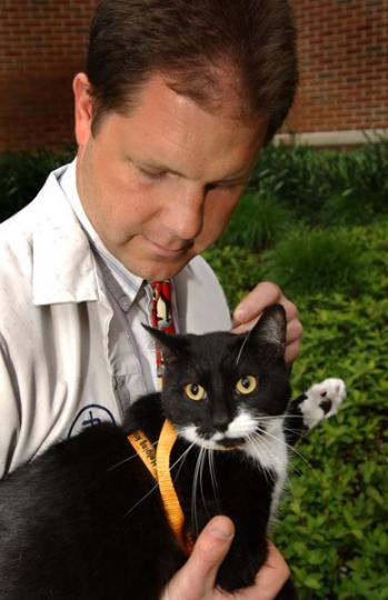 Steve Thompson, DVM, Dipl. ABVP, is director of the Pet Wellness Clinic at Purdue's School of Veterinary Medicine. Service photo/David Umberger.