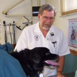 Larry McAfee, DVM, examines a dog at McAfee Animal Hospital in Valparaiso, Ind. Purdue and the American Animal Hospital Assn. teamed up to make over the veterinary clinic from the inside out, addressing the business and management practices.