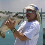 Dr. Elliott Jacobson, professor of zoological medicine, poses with a sea turtle being surveyed as part of a research project.