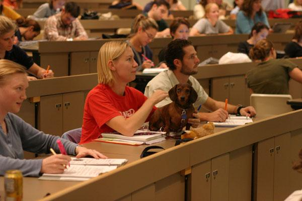 The College of Veterinary Medicine accepts 120 first-year students each fall from more than 800 applicants.