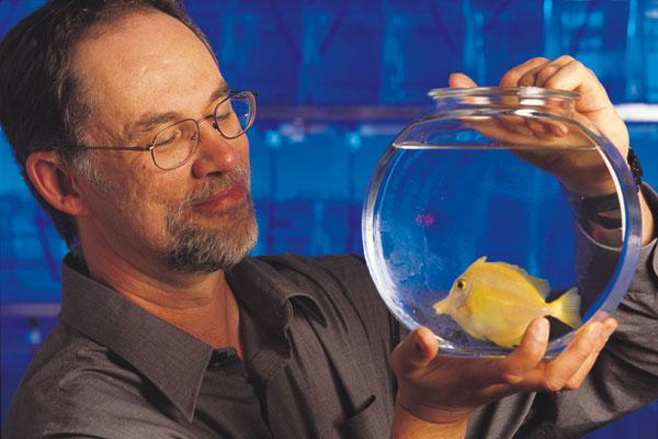 Atlantic Veterinary College is known globally for its expertise in aquatic species health. Award-winning professor Dave Speare, DVM, DVSc, led a college research team to the discovery of the world's first vaccine for a microsporidal disease.