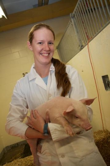 First-year student Dayle Borchardt holds a piglet during Vetavision, a student-organized public open house that is held every three years at WCVM.