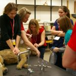 Students from veterinary medical schools worldwide came to Madison in 2010 for the Student American Veterinary Medical Association symposium. Here, students use a Resusci-Rover to practice CPCR techniques in the Cardiopulmonary Cerebral Resuscitation lab.
