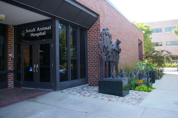 Wisconsin's Veterinary Medical Teaching Hospital has more than 20,000 patient visits a year. The hospital is open to the public and provides 24-hour emergency service for companion animals, horses and farm animals.