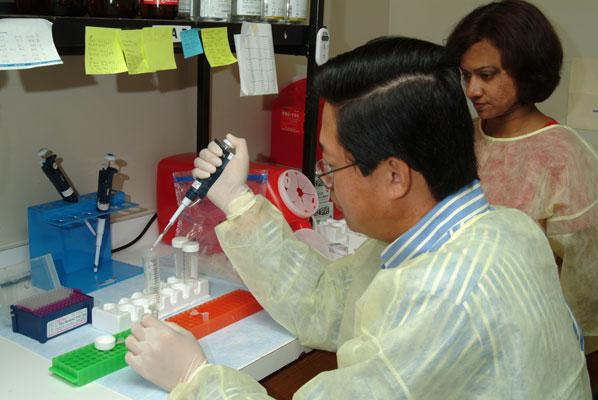 Dr. X.J. Meng (left), was awarded nearly $3 million in research grants to study the hepatitis E virus.
