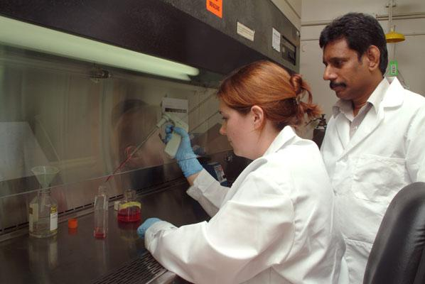 Dr. Elankumaran Subbiah (right) is working on the use of reverse genetics to alter Newcastle disease virus.