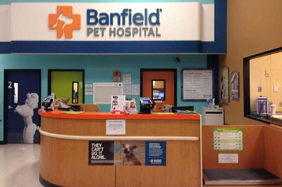 Banfield Releases Corporate Social Responsibility Foundation Impact