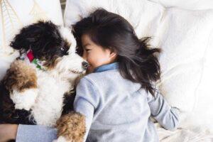 Photo courtesy Petsmart Canada Inc.