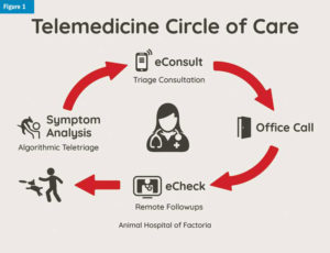 Graphic showcasing the Telemedicine Circle of Care from Symptom Analysis to eConsult to Office Call to eCheck to pet parent enjoying the fun with their pet.