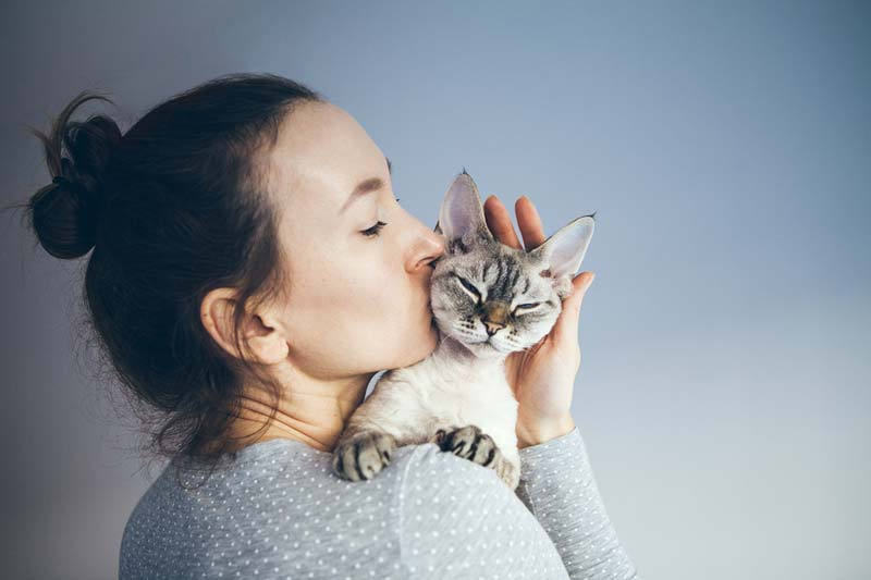 Introducing anti-Fel d1 antibodies into a cat's diet can minimize the release of allergens, reports Purina.