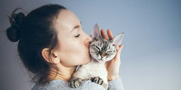 low allergies diet protein for cats