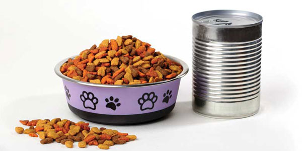 www.veterinarypracticenews.com