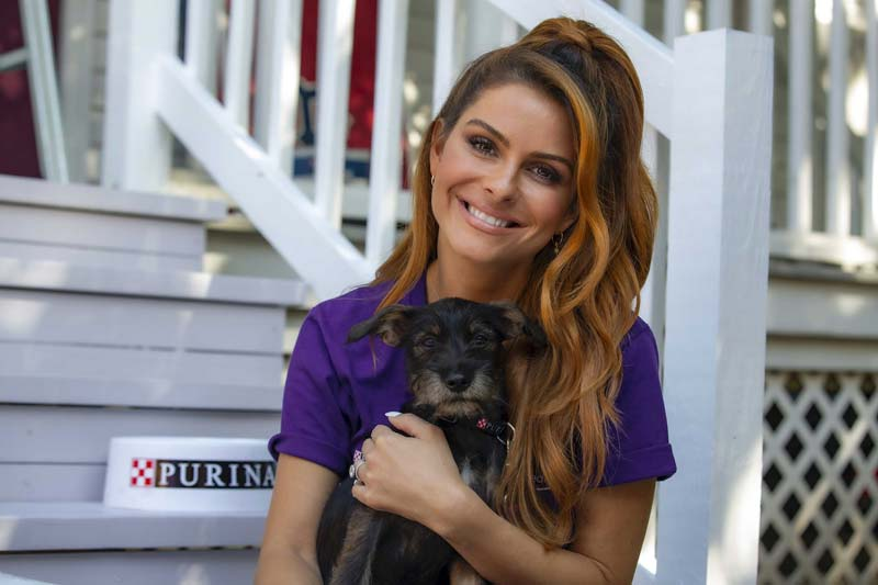 Journalist Maria Menounos has joined the Purple Leash Project.