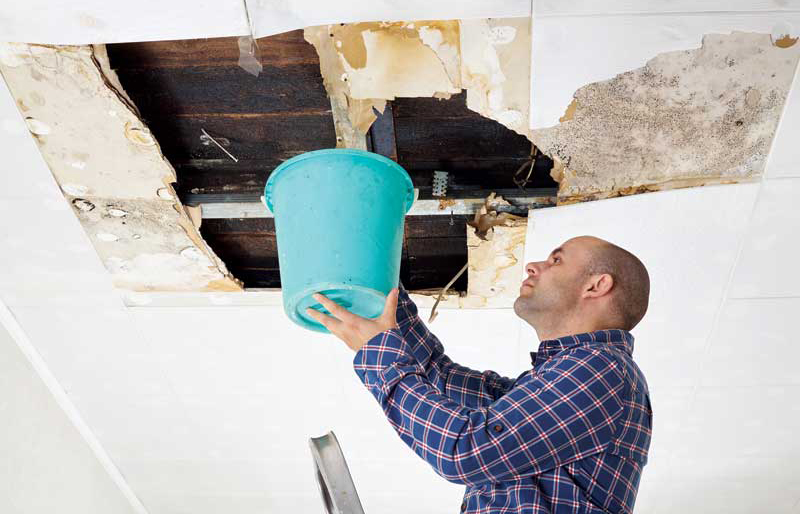 Wet ceiling tiles from a leaking roof are a potential hazard, as mold can develop, creating the risk for respiratory illnesses. OSHA requires businesses document the damage and how it is to be repaired.