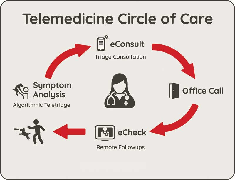 Figure 1: A telehealth platform can provide an adequate assessment of a pet's situation after-hours by facilitating the gathering of symptoms and other clinical data while maintaining veterinarian-client-patient-relationship (VCPR) compliance. Photo courtesy Shlomo Freiman
