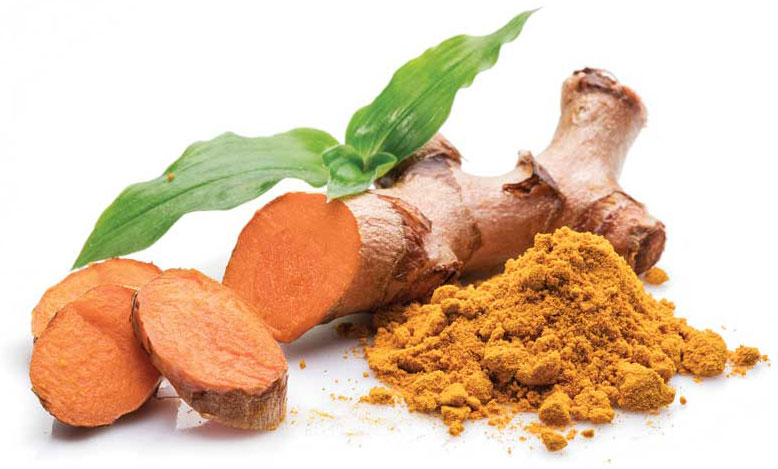 Although cannabidiol (CBD) is the rising star dominating the veterinary market for plant-based remedies these days, there are many others that continue to be used with less fanfare by pet owners and less attention from veterinarians. One of the more popular of these is turmeric.