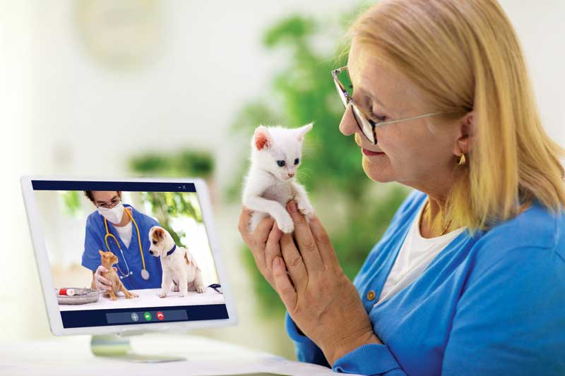 """Telemedicine, what was once """"nice-to-have"""", is slowly becoming a veterinary practice differentiator, particularly with the uptick in pet adoptions thanks to sheltering-in-place orders."""