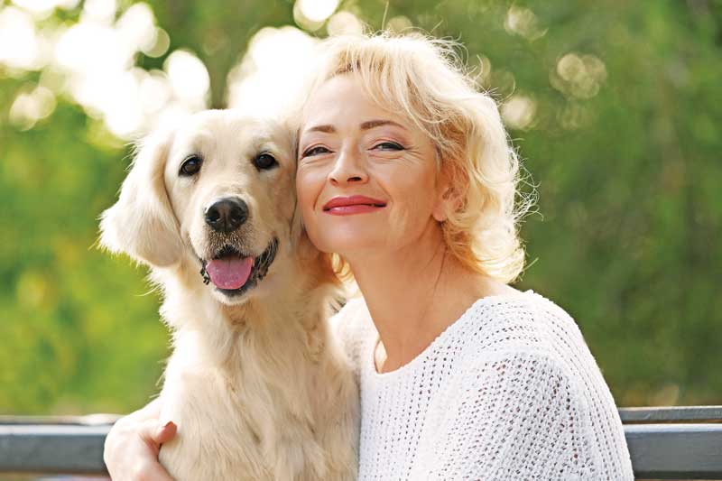 Could cannabis play a role in geriatric, palliative veterinary care?
