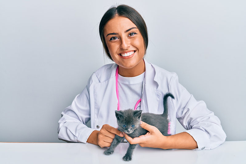 Cat-loving veterinary students are encouraged to sharpen their claws and pounce on a scholarship opportunity from Winn Feline Foundation (Winn) and the American Association of Feline Practitioners (AAFP). Photo ©BigStockPhoto.com