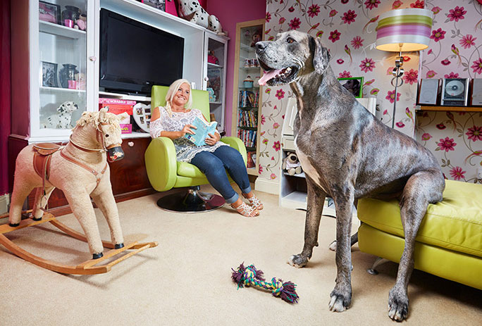 Freddy, the world's tallest dog, has passed away.