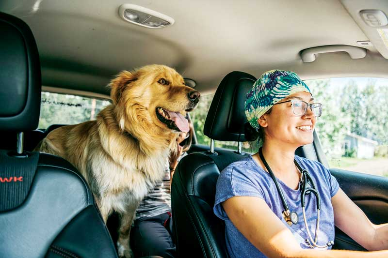 Dr. Tuma's mobile practice, Northwest Territories Veterinary Services, allows her to treat animals within Yellowknife, as well as in communities in surrounding areas.