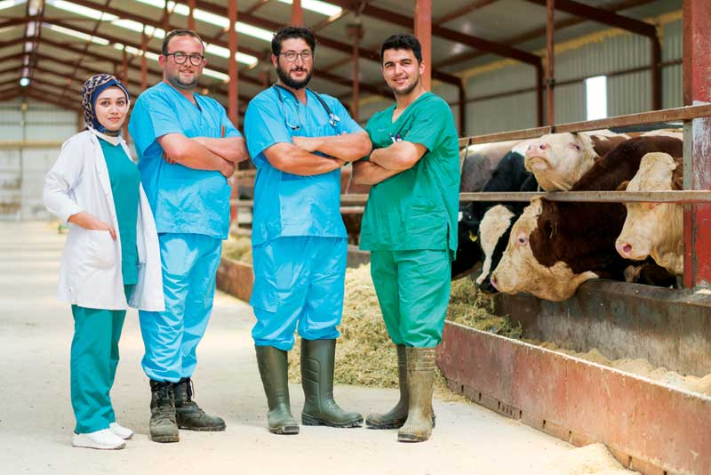 As the emphasis of veterinary diagnostics shifts away from curative medicine toward prevention, as well as early detection and disease management, it has become clear the standard diagnostic tools used in veterinary care have yet to embrace today's technological advancements
